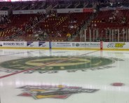 Iowa Wild Ice. (Photo: Patricia Teter. All Rights Reserved.)