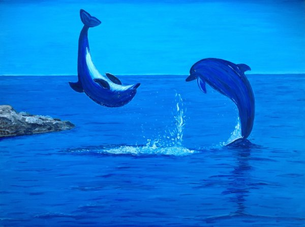 Dolphin Pastel Drawing
