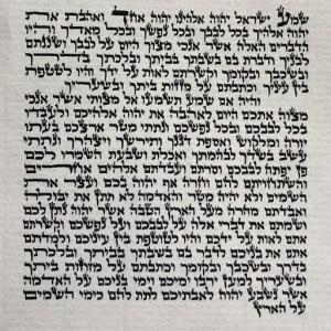 Mezuzah Parchment Scroll
