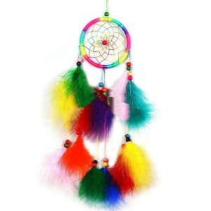 Dreamcatcher with Colorful Feather