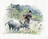 aquarelle Vietnam (3)