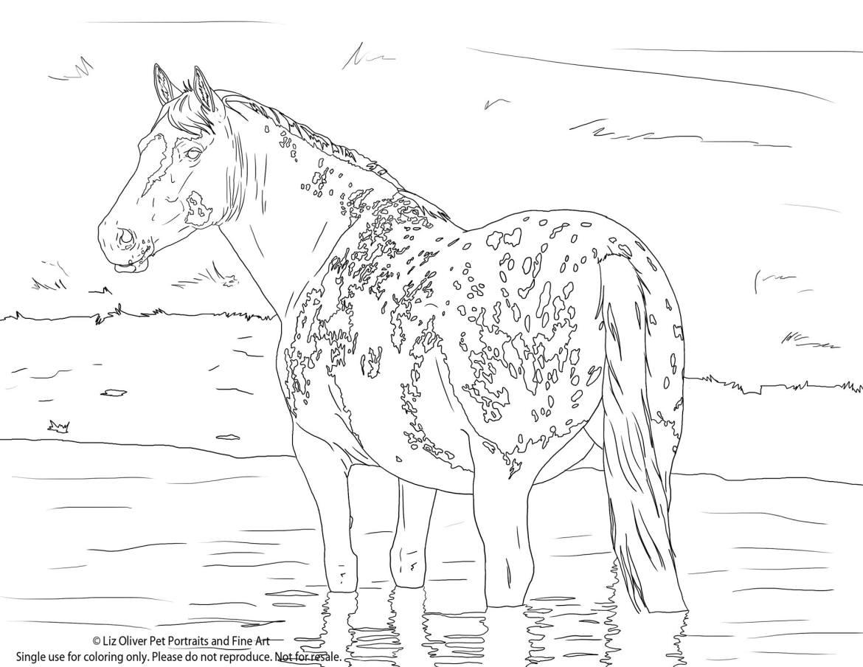 L Olivier-coloriage-gratuit-cheval2