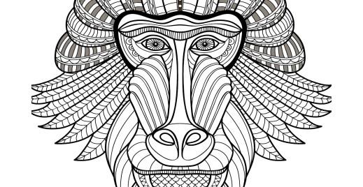 Coloriage gratuit, singe babouin