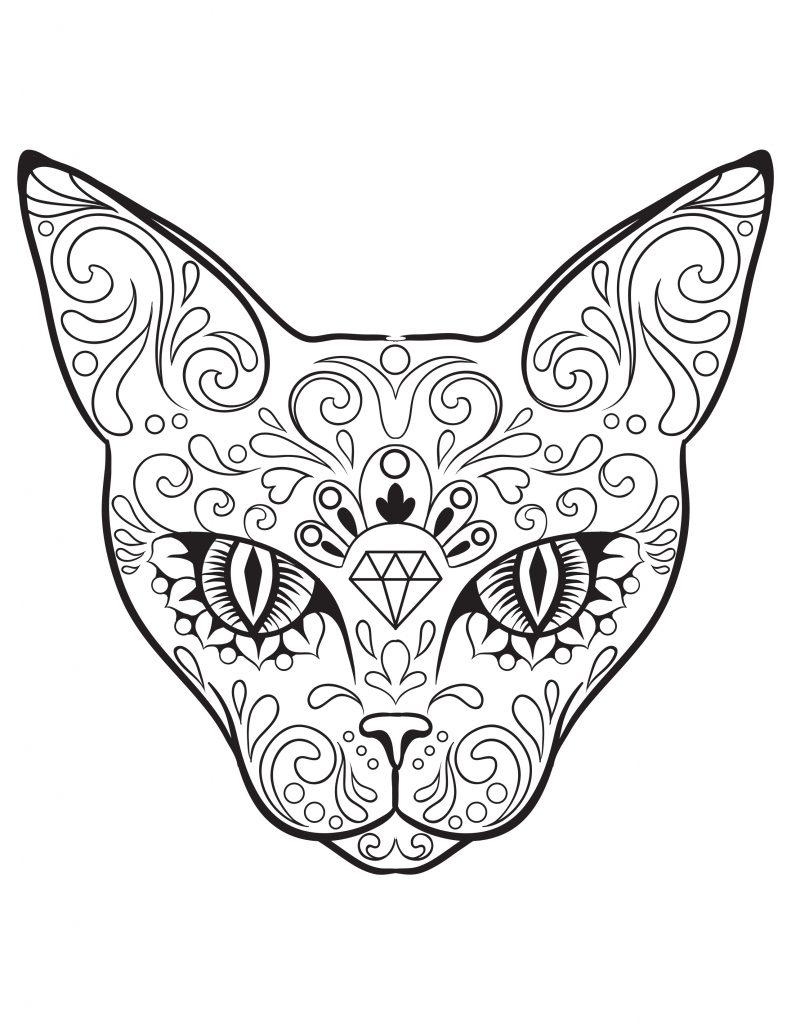 image à colorier chat skullcandy