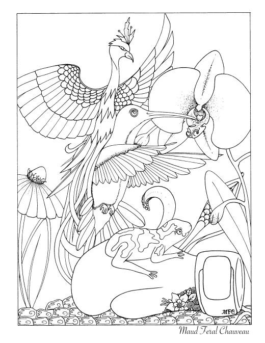 Colibri et grenouille à colorier par Maud Feral