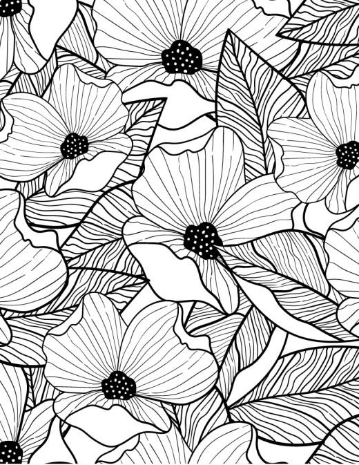Bouquet Archives Page 2 Sur 2 Artherapie Ca