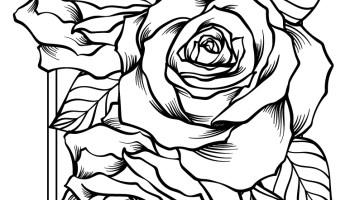 Coloriage Gratuit Bouquet De Roses Artherapie Ca