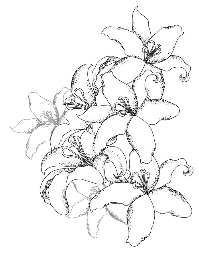Bouquet de lys coloriage pour adulte gratuit - Artherapie.ca