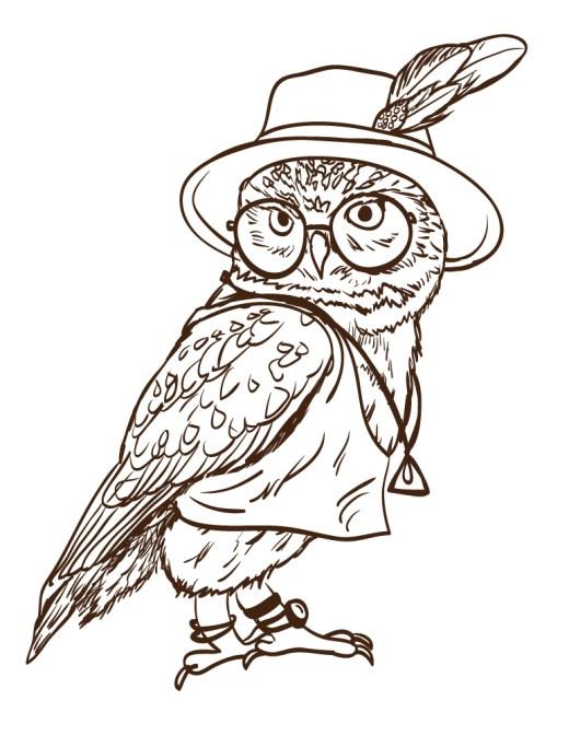 Adorable image de hiboux a imprimer et dessiner