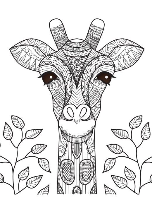 Coloriage girafe art-thérapie difficile à imprimer par Bimbimkha