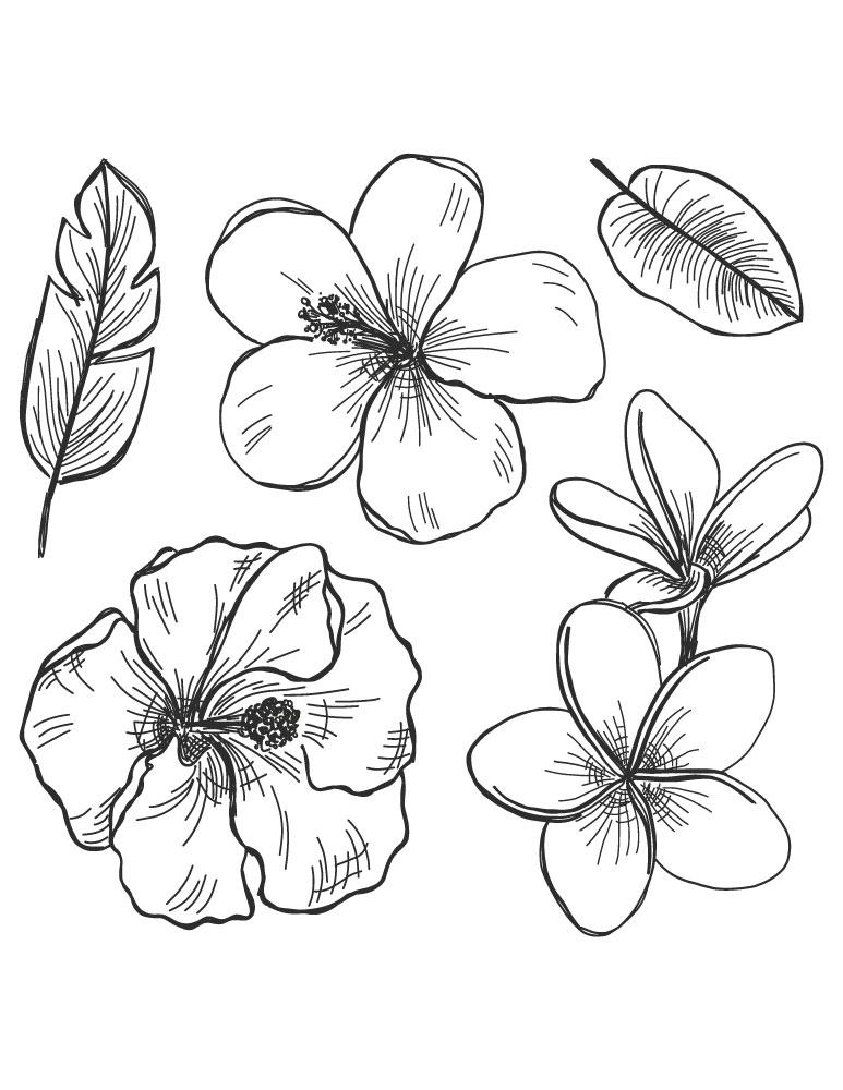 Fleurs et feuilles dessin facile imprimer pour destresser - Dessin de fleure ...