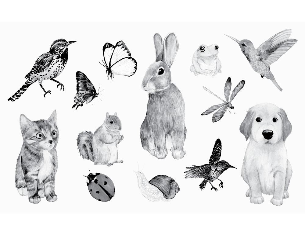 Dessin animaux domestique stamp gratuit à imprimer ...