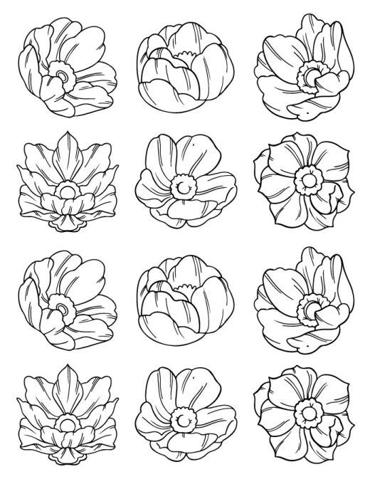 Fleurs pour pratique coloriage adulte artherapie