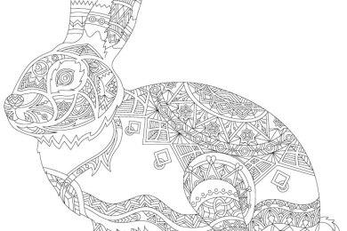 Lapin à dessiner pour adulte artherapie