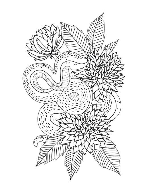 Coloriage serpent imprimer gratuit