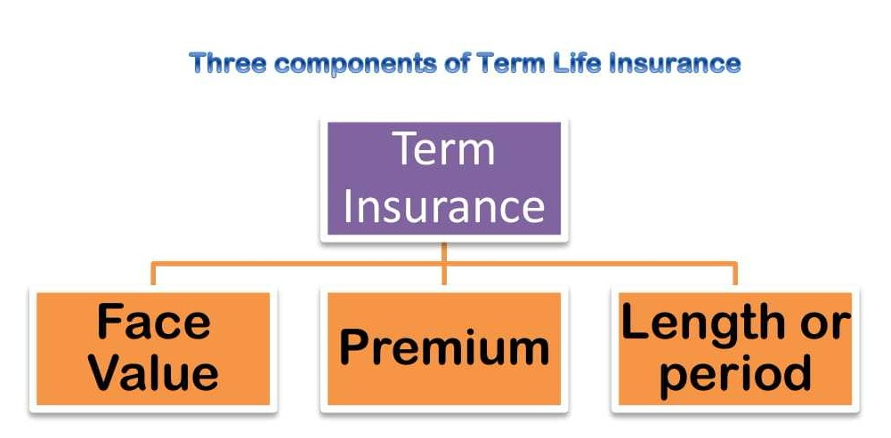 Three components of Term Insurance