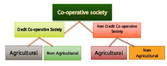 Co-operative society in India