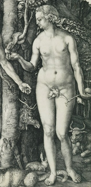 19. Albrecht Dürer, The Fall of Man (detail: Eve), engraving, 1504, Metropolitan Museum