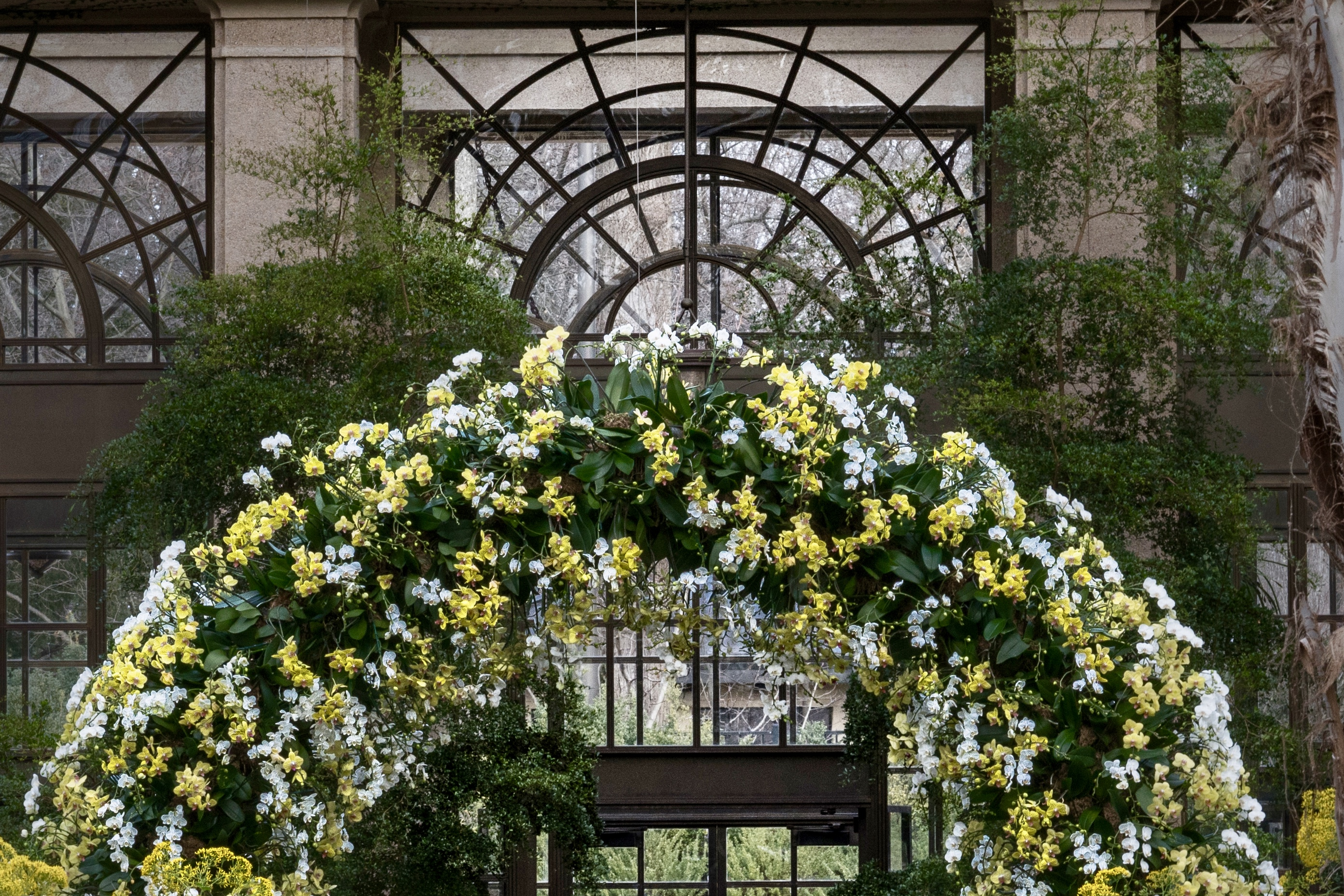 Arch of hundreds of Orchids