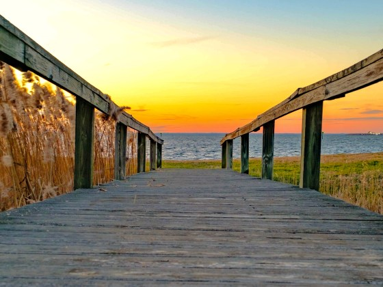 Golden hour on the Chesapeake Bay's Eastern Shore.