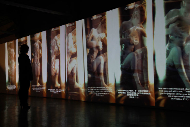 Pey-Chwen Lin, The Revelation of Eve Clona; Interactive Installation (3D Animation, Computer, Interactive System, Web Cam, Projectors, Stereo), 2011, Dimensions variables