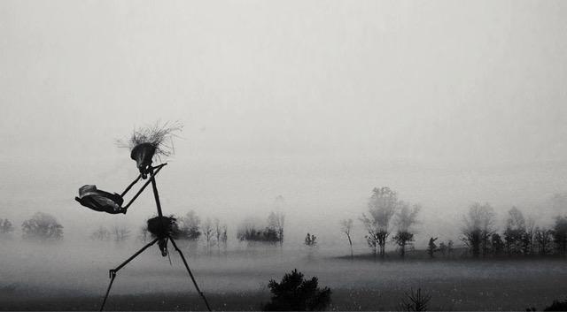 November - Rainer Starnet