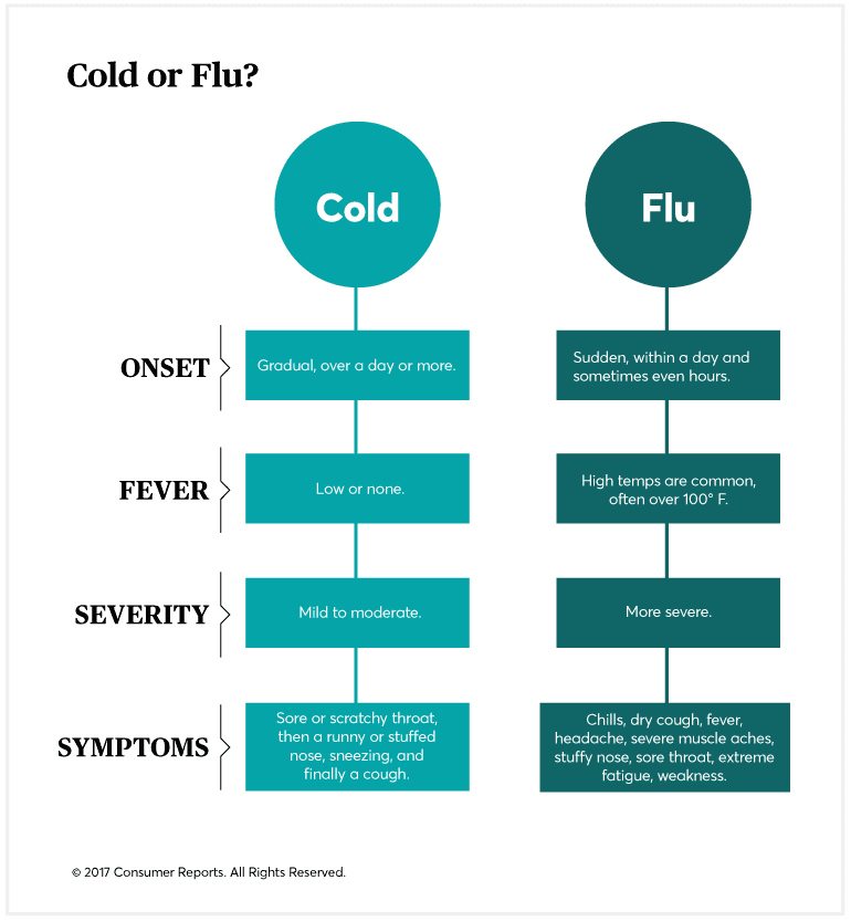 A Day-by-Day Guide to Treating a Cold or the Flu - Consumer Reports