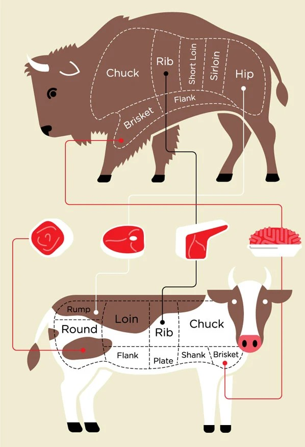 bison vs beef meat