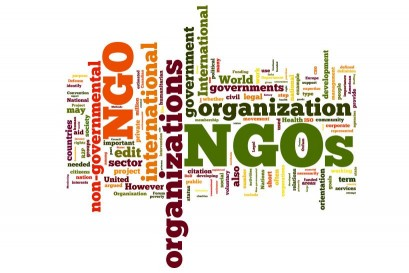 Role of non-governmental organisations(NGO) in the protection of human rights