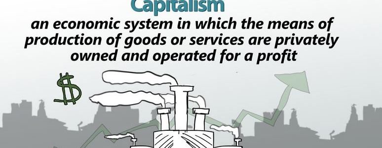 Role of government in capitalist economies