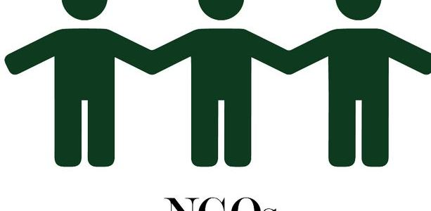 The role of NGOS in participatory governance