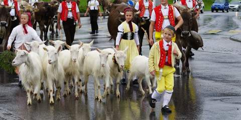 Swiss customs and festivals