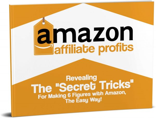 Amazon profit secret revealed