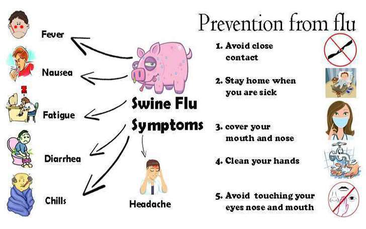 Swine Flu, Symptoms, Prevention and Treatments