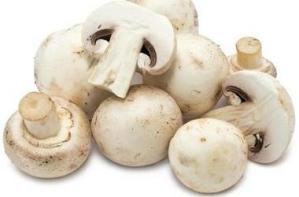 mushrooms ❘ मशरूम