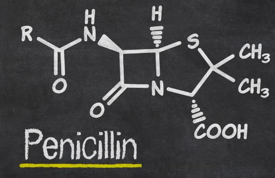 How does Penicillin Kill Bacteria