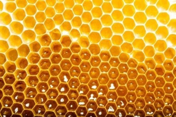 How to Consume Honey Without Getting Fat