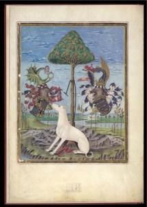 De Sphaera estense - Tavola VII