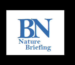 logo-nature-briefing