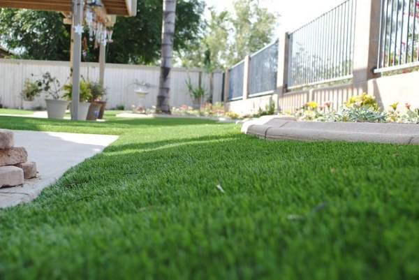 enjoy lush drought-tolerant lawn