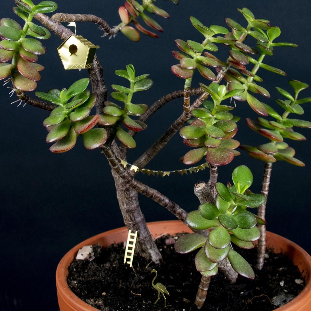 Mini nichoir botanopia 3