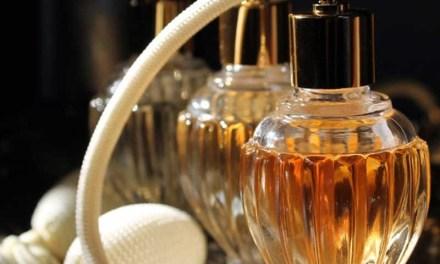Con raíces de plantas artiguenses se fabrican los perfumes franceses más caros