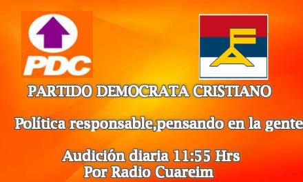 DECLARACION PLENARIO NACIONAL 738