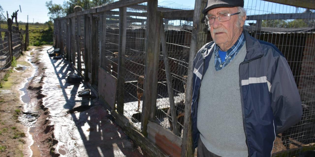 EL REFUGIO DE PERROS «AMIGOS VERDADEROS DE MARY» ATIENDE A MAS DE CIEN ANIMALES DIARIAMENTE.