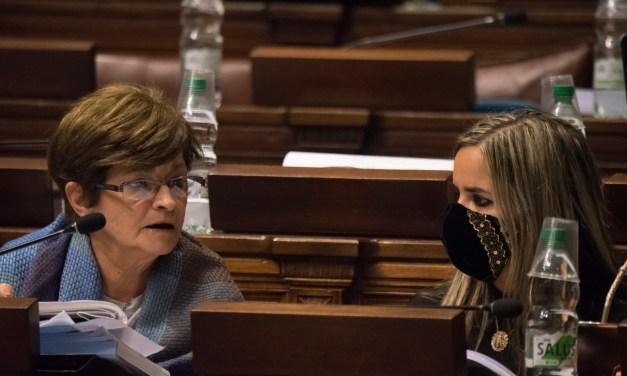 DIPUTADOS ARTIGUENSES PARTICIPAN DE LA VOTACIÓN DE LA LEY DE URGENTE CONSIDERACIÓN.