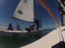 Les deux équipages se croisent sur l'eau