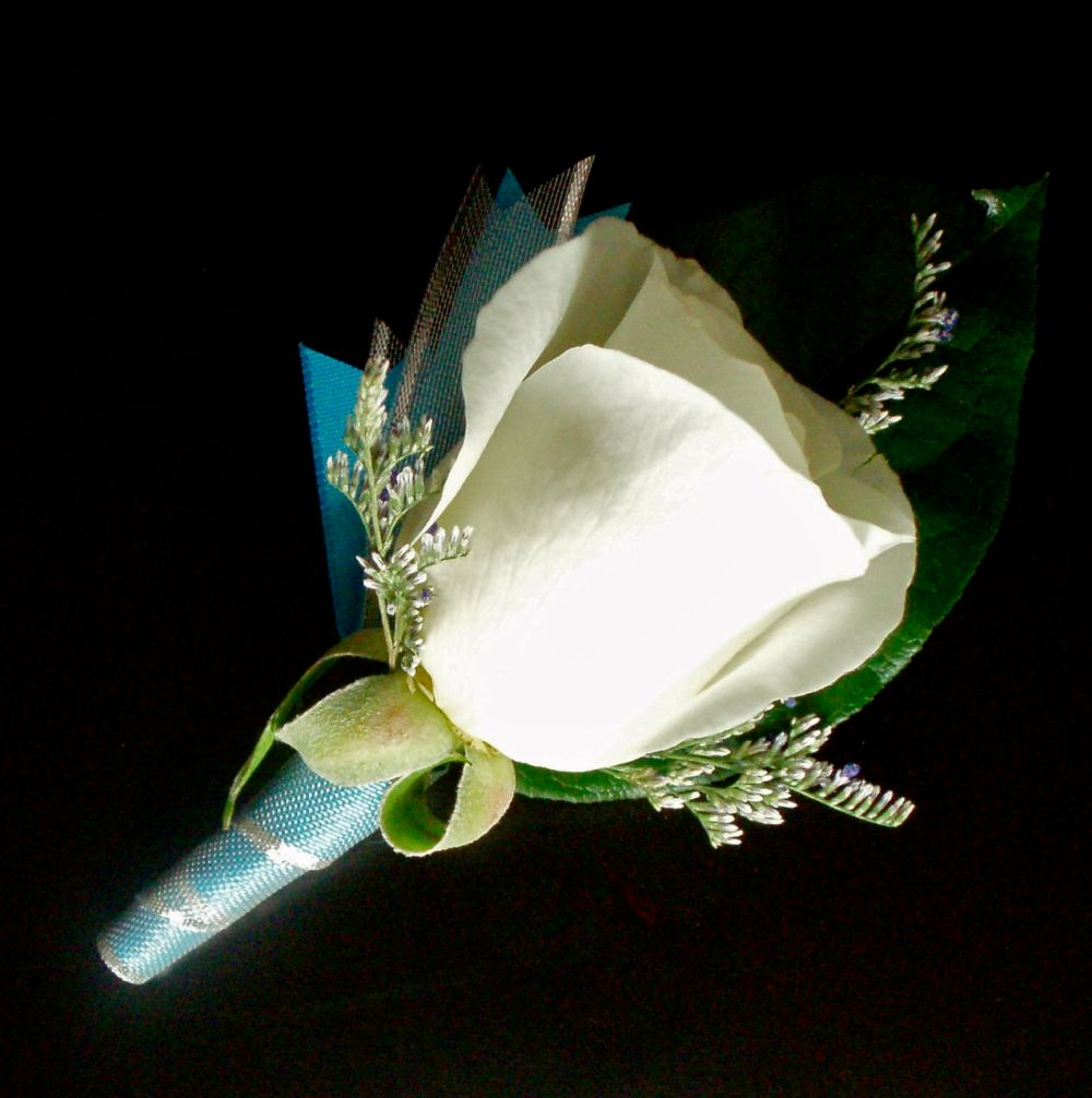 White rose with turquoise accents