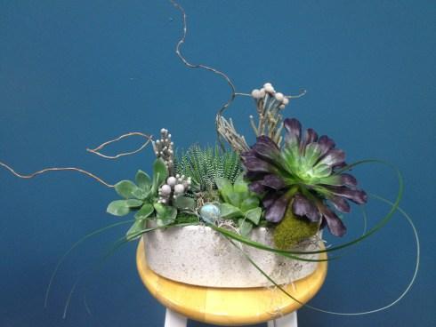 Succulent_design
