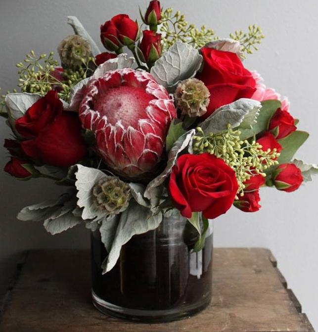 Protea_roses