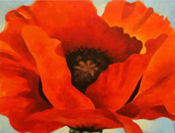 Red Poppy-Georgia O Keefe
